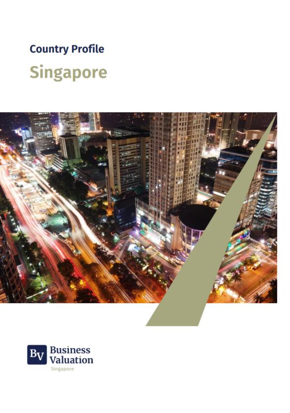 https://businessvaluation.com.sg/wp-content/uploads/2021/08/singapore_business-valuation-singapore_www.businessvaluation.com_.sg_.png